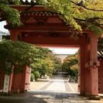 【2017最新】リアルな京都直近紅葉情報!市内でも進行早めスポット☆「真如堂」