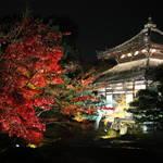 【京都 紅葉の名所】「めぐるたび新しい京都  鹿王院 夜間特別拝観」事前申込による受付が始まっています【ライトアップ】