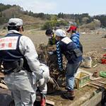 【ボランティア緊急募集】舞鶴・綾部にて台風21号被害の復旧支援のお手伝いを【災害支援】