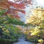 """色付き始めた""""秋の京都""""!紅葉の名所「嵯峨野エリア」をぶらり!"""