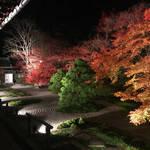 京都屈指の名所!息をのむ美しさの紅葉ライトアップ「天授庵(南禅寺塔頭)」