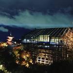 【2017京都紅葉最新】圧巻!絶景夜のライトアップ!!世界に誇る紅葉スポット「清水寺」