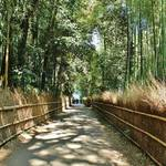 世界中が魅了される京都随一の観光地「嵐山」必ず訪れたい癒しスポット7選!