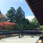 【2017京都紅葉最新】世界遺産!有名すぎる枯山水の石庭を彩る紅葉の借景☆「龍安寺」
