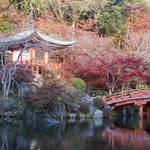 豊臣秀吉も愛した京都・伏見にある紅葉の名所!世界遺産「総本山 醍醐寺」