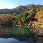 【嵐山紅葉】朝京都で嵐山の紅葉をゆったり楽しんできました♪