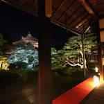 【2019年 京都の紅葉ライトアップ】事前予約でゆったり楽しめる『鹿王院夜間特別拝観』