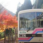 紅葉のトンネルをくぐると?四季折々の景色が楽しめる「叡山電車」に乗るっ!