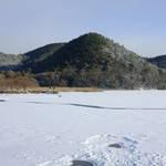 【雪の京都】今しか見られない自然の造形美「広沢池」の池底に積もる雪が美しい