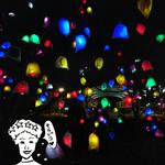 ライトアップ「京都・冬の光宴2018 ~星屑のアクセサリー~」が2月14日まで梅小路公園で開催中☆【最先端星人の京都探索】
