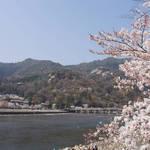 サクラ満開の「京都 嵐山」を大満喫!一度は訪れたい日本有数の観光地