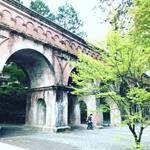 【京都桜パトロール】人気観光スポット最終章!桜の見頃終盤☆すでに新緑の季節の兆し☆「南禅寺」