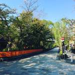 京都祇園屈指の夜桜スポット!桜の見頃終盤!!そろそろ青柳が台頭☆「祇園白川」