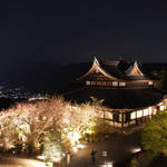 桜と京都の夜景を一望できる「将軍塚青龍殿」限定ライトアップ