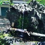 【京都伏見名水めぐり】スタンプラリーで名水チェック☆勝ち運を授ける不二の水「藤森神社」