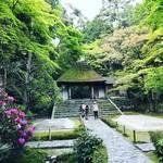 【京都寺めぐり】東山の新緑シーズン到来!季節の花も咲き乱れる穴場的空間☆鹿ケ谷「法然院」