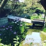 【京都季節の花】花菖蒲満開!無料で見れます!!南禅寺界隈の数寄屋造りの別邸「野村碧雲荘」