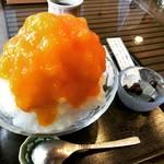 【京都かき氷めぐり】数量限定のあんず氷は濃厚!最後まで絶品!!年イチで必食☆甘味処「みつばち」