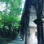 【京都お寺ぶらり】真夏の観光は早朝に!涼やかな水路閣が吉◎石川五右衛門の三門でもおなじみ「南禅寺」