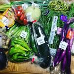 京都伏見の産直カラフル夏野菜がどっさり!一風呂ついでにお買いもの☆「じねんと市場」【京都竹田】