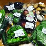 【京都産直市場めぐり】京都山城の野菜や果物が満載!名産品いちじくは今が旬☆JA京都やましろ直売所「五里五里市」