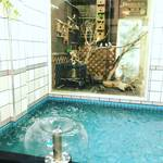【京都銭湯めぐり】絶対行くべき!インコを眺めながら一風呂!!創業120年の老舗銭湯☆「松葉湯」