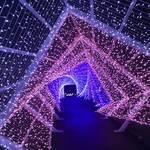 るり渓温泉のライトアップイベントがパワーアップ「シナスタジアヒルズ」