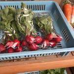 風情ある北嵯峨「 広沢の池」で採りたてお野菜を格安ゲット!