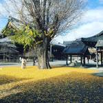 【2018京都紅葉最新】晩秋の境内には黄金に輝く銀杏の絨毯☆「佛光寺」【12月5日時点】