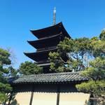 【都七福神めぐり】京都発祥で日本最古の巡拝!平安遷都に建立された世界遺産で結願☆7寺社め「東寺(教王護国寺)」