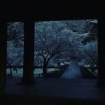 【京都雪景色】早起きは三文の徳!朝活座禅会で白銀の絶景☆人気観光スポット「南禅寺」