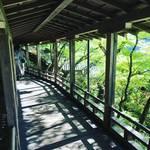 【京都新緑めぐり】紅葉の名所『永観堂』は新緑の名所でもあり!若葉そよぐ緑の絶景☆
