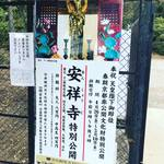 【京都お寺めぐり】奉祝天皇陛下御即位☆京都非公開文化財特別公開で初公開!「安祥寺」