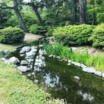【京都御苑めぐり】今が見ごろ!季節の花・黄菖蒲と杜若のコラボ!!水遊びスポット「出水の小川」