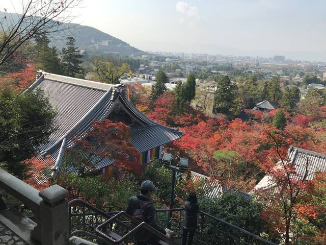 【保存版】絶景!京都オススメの市内一望できる眺めのいい神社仏閣☆【厳選8寺社】
