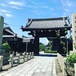 【京都お寺めぐり】西陣にある秋に咲く珍しい『御会式桜』の名所!十六羅漢の庭園も☆「妙蓮寺」