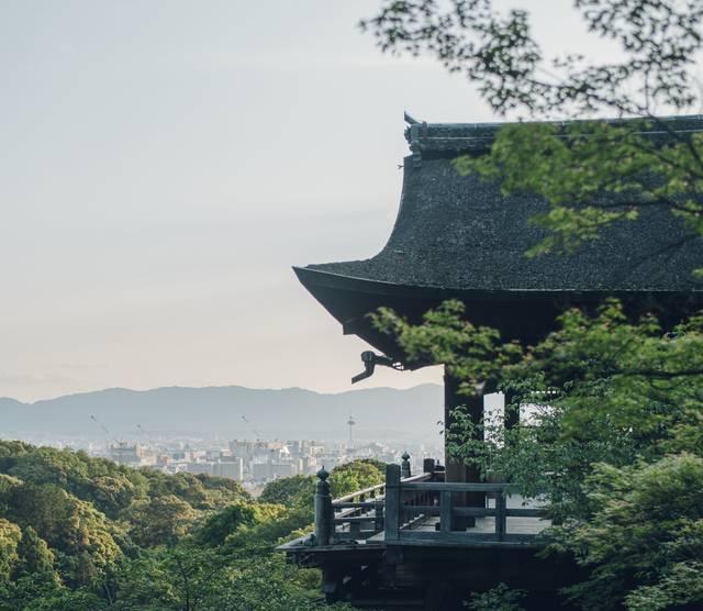 小説家・原田マハが紡ぐ「CONTACT つなぐ・むすぶ 日本と世界のアート展」in清水寺