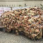 【保存版】京都有名神社のインスタ映えする絵馬を集めました☆【厳選5社】