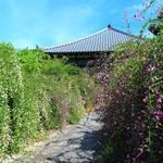 【京都花めぐり】秋の到来☆萩が咲き誇る名所巡り【萩】