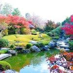 人数限定して開催。妙心寺退蔵院お食事付き「観楓会」