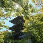 【紅葉の名所】「真如堂」三重塔の修繕工事が終了しました!