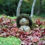 とっておきの京都の紅葉「大原編」名所から穴場、地元グルメまで