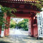 【2019京都紅葉最新】JR東海『そうだ京都、行こう。』CMで注目スポット!夕暮れが狙い目☆「真如堂」