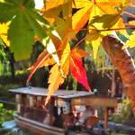 とっておきの京都の紅葉「伏見編」名所から穴場、地元グルメまで
