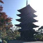 【奉祝天皇陛下御即位】 世界遺産『東寺』のシンボル!初層内部が拝観可能☆京都非公開文化財特別公開「五重塔」