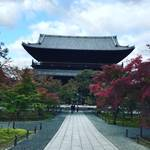 【2019京都紅葉最新】徐々に色づく三門や水路閣!塔頭でも特別拝観実施中☆「南禅寺」