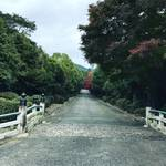 【京都ぶらり】京都市内イチの古さ!広大な敷地に原生林あり!!自然も満喫☆「天智天皇山科陵」