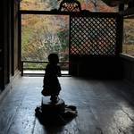【京都紅葉】国宝や鳥獣戯画も楽しめる紅葉の名所「世界遺産 高山寺」【高雄エリア】