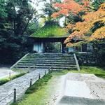【京都紅葉】静寂の中に広がる色鮮やかなモミジと白砂檀!「鹿ケ谷法然院」