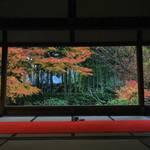 【京都紅葉巡り】お抹茶をいただきながら秋の額縁庭園を楽しむ「宝泉院」【大原エリア】